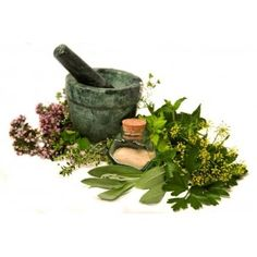 Poudres et extraits de plante pour vous soigner au naturel