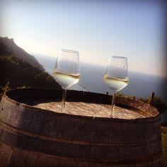 Anche questa e' Gabicce: del buon vino con una vista spettacolare ... #fattoriamancini #ilfurgoncino