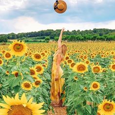 Sunflower 🌻 paradise in Catalonia Spain 🇪🇸 by via Photography Projects, Nature Photography, Photo Dream, Sunflower Pictures, Found You, Sunflower Fields, My Photos, Vacation, Photo And Video