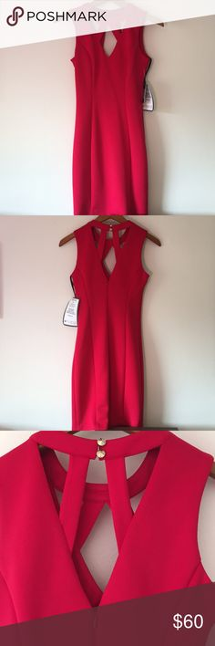 Guess Tre Cocktail Dress This Guess cutout cocktail dress is brand new, never been worn before. Size 0. Reddish-pink lipstick color. Guess Dresses