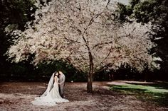 My Journey to Plan A Incredible Socal Wedding on a Budget: VENUE # 2: Descanso Gardens (La Canada Flintridge, CA)