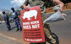 南アフリカの首都プレトリアで、角を狙ったサイの密猟に抗議する人(2011年9月22日撮影、資料写真)。(c)AFP=時事/AFPBB News