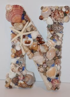 what are seashells made out of
