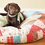 15 ways to make a dog bed
