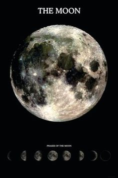 (24x36) The Moon With Phases Poster Poster http://www.amazon.com/dp/B00PW21YHO/ref=cm_sw_r_pi_dp_SrSWvb16BV9DF