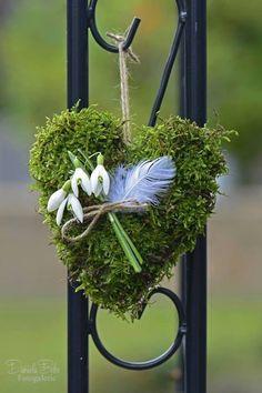 60 pretty windowsill decoration ideas for Easter Bulb flowers Spring flowering bul Windowsill Decoration, Spring Decoration, Spring Flowering Bulbs, Spring Bulbs, Spring Garden, Winter Garden, Deco Floral, Planting Bulbs, Bulb Flowers