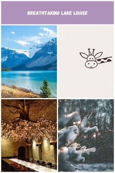 All the lakes you HAVE to see in Banff National Park near Lake Louise! Natur Pictures Breathtaking Lake Louise