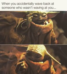 Baby Yoda/The Child from the Mandalorian Star Wars Really Funny Memes, Funny Relatable Memes, Stupid Funny Memes, Funny Stuff, Funny Things, Yoda Funny, Yoda Meme, Funny Cute, Hilarious