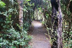 139008 :: 歩きんぐくらぶ|新日本歩く道紀行100選を通じてウォーカーのための情報サイト