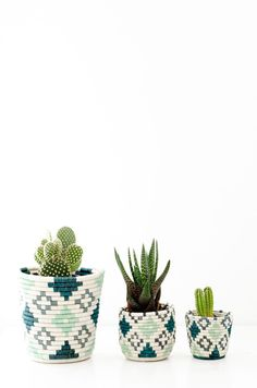 Chic planters upgrade any room.