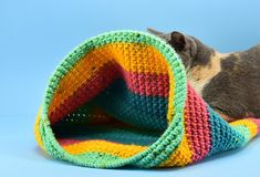 Have a kitty that loves to hide away? Using the yarn you have on hand you can create a lovely crochet cat sack hideaway they'll just love! Diy Crochet Cat Bed, Cat Cave Crochet Pattern, Crochet Baby, Crochet Patterns, Cat Pattern, Easy Crochet, Crochet Ideas, Crochet Projects, Free Pattern