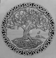 Black And Grey Celtic Tree Of Life Tattoo Design