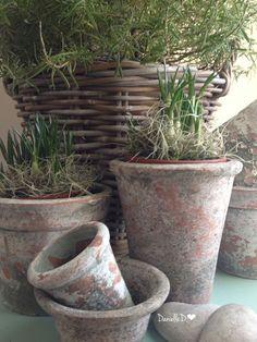 Aged clay pots.