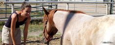 Bist du für die Gleichberechtigung? Warum es nicht nur Regeln für das Pferd geben sollte - http://www.pferdefluesterei.de/regeln-pferde-erziehung/ Was meinst Du?