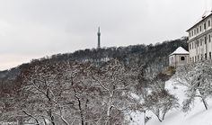 Petřín tower and hill covered in snow, Prague