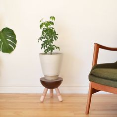 Plant stand solid walnut with dowel maple legs by tealandgold, $180.00