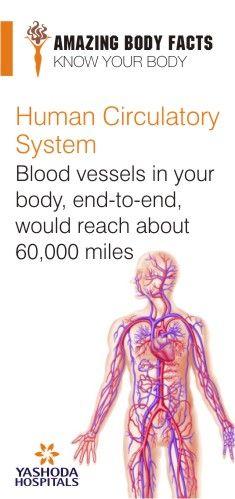 #YashodaHospitals #Amazing #BodyFacts