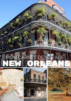 """Mon carnet de voyage à la Nouvelle Orléans : deux jours sublimes dans la ville qu'on surnomme """"The Big Easy"""". Bayou, alligators, French quarter, Bourbon street mais aussi beignets et jambalaya"""