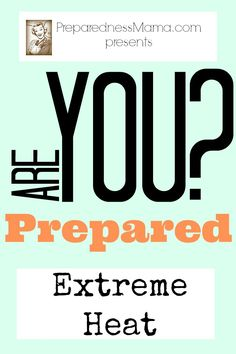 Are you prepared for extreme heat this summer? Be prepared and stay cool with these tips | PreparednessMama