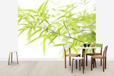 Miniature Bamboo - Tapetit / tapetti - Photowall