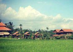 Bali Silent Retreat: Yoga & Meditation | LETSGLO #bali #meditation