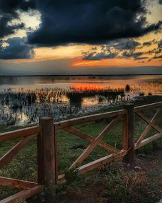Kızılırmak Delta Bird Paradise - Bafra, Samsun, Turkey ~~ photo by:Nilgün Kanık ( @nlgncan )