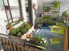 Cloison végétale pour jardinières, Castorama http://www.m-habitat.fr/terrasse/balcons/les-balconnieres-2829_A #balcon #plante #fleur