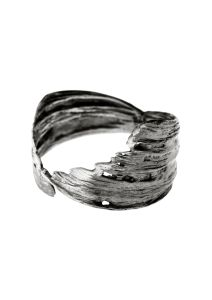 Icelandic_ring_LAX_collection