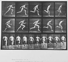 """Photographed by Eadweard Muybridge. Photographic sequence of a human male from the front and side, swinging a bat at a baseball. One of many studies by Eadweard Muybridge from his seminal work """"Animal Locomotion"""" created in Male Figure Drawing, Figure Drawing Reference, Animation Reference, Anatomy Reference, Human Reference, Storyboard, Zine, Eadweard Muybridge, Anatomy Poses"""
