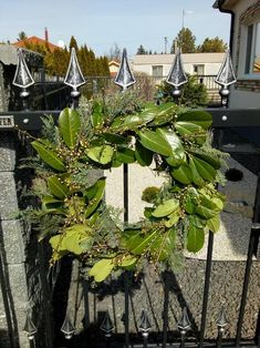 Linear 324 - Kolekcie | Modrastrecha.sk Flat Roof House, Plants, Plant, Planting, Planets