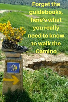 I'm beginning to understand why people return to Spain to walk the Camino de Santiago more than once. When we reached Santiago, the end of our journey. Camino Way, Camino Trail, The Camino, El Camino Pilgrimage, Spain Pilgrimage, Cancun Hotels, Beach Hotels, Beach Resorts, Reisen In Europa