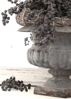 A bunch of dried dates on a French urn .. love it