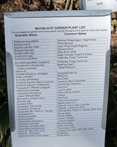 List of Plants for a Moonlight Garden at the Edison Winter Estate in Fort Myers, Florida
