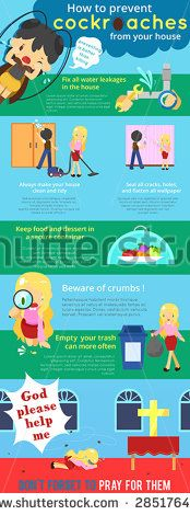 How to prevent cockroaches from your house cartoon info graphic template design with sample text layout, create by vector