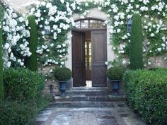 Flowers Garden In Front Of House Entrance Climbing Roses 67 Trendy Ideas - Ponds and other backyard ideas - Garten White Climbing Roses, White Roses, White Flowers, Climbing Vines, Beautiful Gardens, Beautiful Homes, Outdoor Spaces, Outdoor Living, Dream Garden