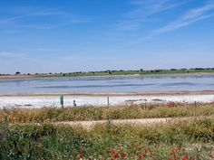 Humedales de Mota del Cuervo. LIFE Humedales de La Mancha
