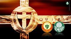 Palmeiras, o maior campeão do Brasil! #brasileirão2016 #rumoaotítulo