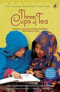 A book that changed the way people think about changing the world: Peace Through Education