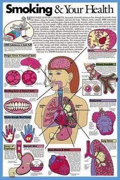 Your Body Defects On Smoking By YJ Photo by mane2nj   Photobucket