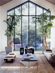 Loving these oversized windows framed by indoor trees and a beautiful vintage peach Persian rug behind.