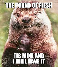 1000+ images about Otter puns on Pinterest | Otter, The otter and Sea ...  Animal Shakespeare Memes
