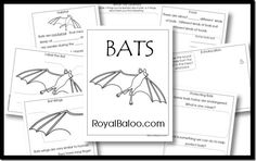Visit Royal Baloo for this free bat unit study. Find more free unit studies here!