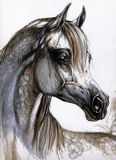 Arabian Horse Painting by Angel  Tarantella