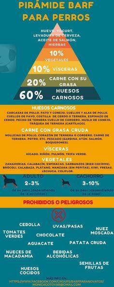 Pirámide Barf. Alimentación para perros