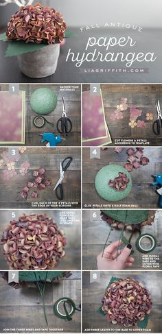 DIY Paper Hydrangea for Fall by Handcrafted Lifestyle Designer Lia Griffith