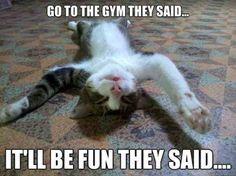 Sore After Workout Meme