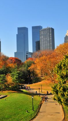 Central Park In Autumn. ~ NYC.