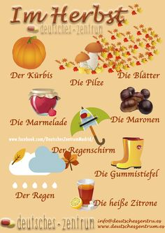 Herbst Wortschatz Vocabulario DAF German Alemán Deutsch