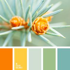 Natural combination of rich orange, gentle yellow, silver-gray, soft gray-green and light blue. This color scheme will help you choose interesting combinations of colors from different parts of the spectrum and is useful in the formation of romantic and creative wardrobe of the fair sex.
