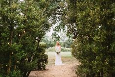 Outdoor wedding, bride, tree line, maryland wedding